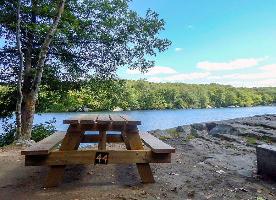 picnic site overlooking Olney Pond at Lincoln Woods State Park